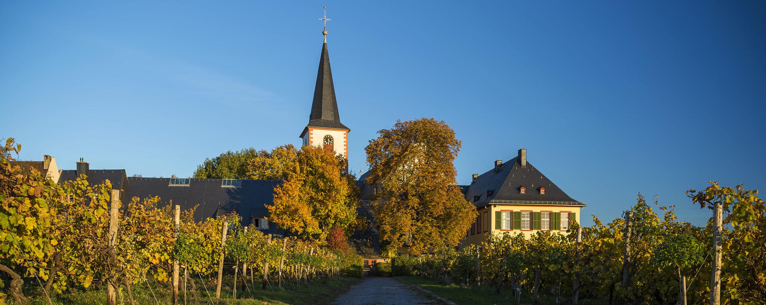 Ansicht Domänenhof und St. Peter und Paul