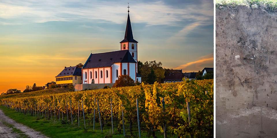 Ansicht Hochheimer Kirche und Erdprofil